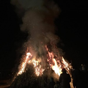 fuoco friuli