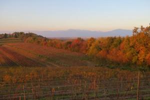 autunno manzano