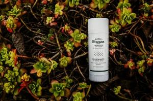 Il nuovo deodorante il crema-stick Deo Brividino