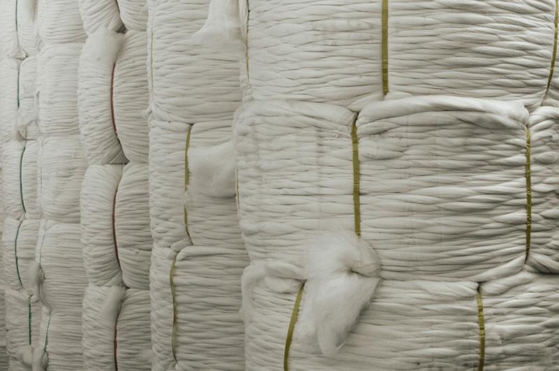 Lana prima della tintura:Wool before dyeing copia