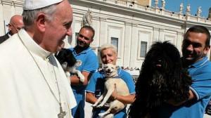 Papa Francesco (foto dalla rete)