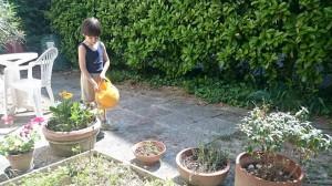 il piccolo couchsurfer si prende cura del giardino della host