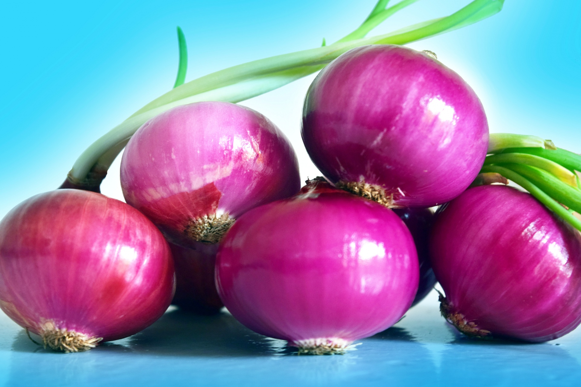 perspective-onion-1
