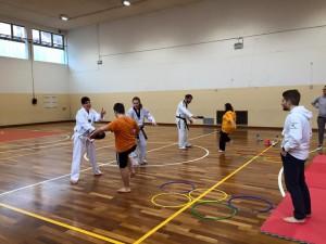 Taekwondo e...