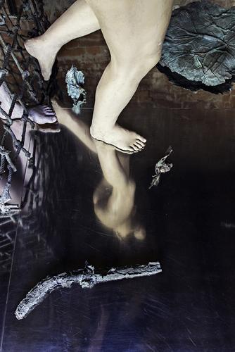 Alik in Wonderland. Di Francesca Molteni