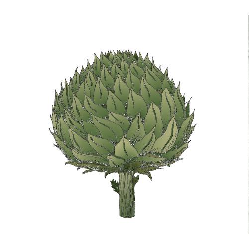 """Il progetto Zanellato/Bortotto si articola in quattro proposte tra cui """"Carciofone"""": il carciofo, emblema della convivialità tipica di Roma e del suo buon cibo, """"si veste"""" di Alcantara in un'ampia nuance di colori, nelle versioni stampate, laminate e goffrate."""