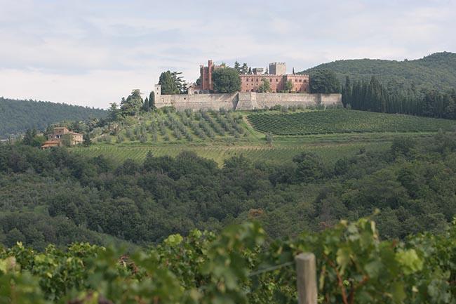 Castello di Brolio e casa del Fattoio, Siena