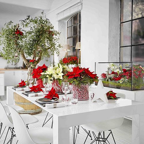 """Per un """"dolce Natale"""" sono sufficienti due vasi di vetro della stessa forma ma di dimensioni diverse. Posizionate il contenitore più piccolo in quello più grande e riempite lo spazio tra i due con le caramelle, i dolcetti e le gelatine che preferite. Riempite il vaso interno con acqua e posizionate il bouquet di Poinsettia all'interno"""