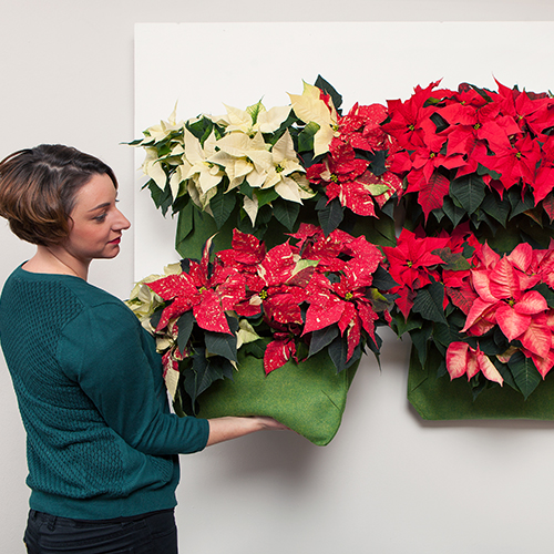 """Valorizzare una parete grazie a un giardino verticale: appendete diverse """"borse-vaso"""" una vicino all'altra"""