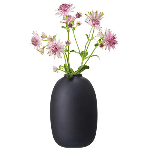 H&M Home sceglie il nero per esaltare il colore dei fiori (5,99 euro)