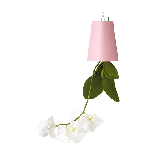 La serie Sky Planter di Boskke nasce per rispondere a queste esigenze: come mettere più verde in casa senza occupare spazio? Come evitare di confinari i vasi in un angolo del salotto? Sfruttando lo spazio in alto (19,95 su madeindesign.it)