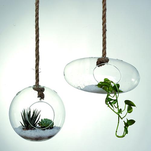 Pensile è la collezione di Maiuguali realizzata in vetro e corda naturale. Adatti sia a fiori che piante, i vasi sono disponibili in forma ovale e a sfera (da 21 a 24 euro)