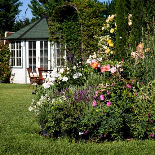 Vivaio Flora 2000 - Aromantica