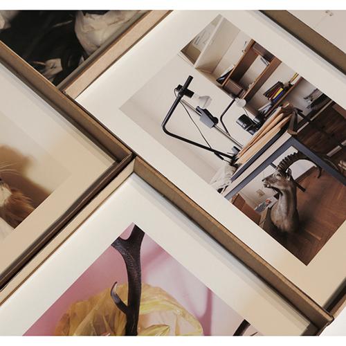 Failed Dioramas di Louis De Belle