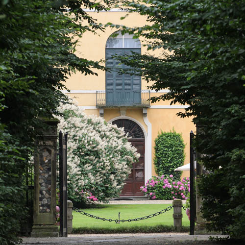 Ortensie a Villa Doria