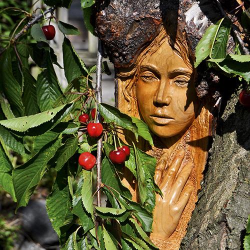 Intaglio su albero di ciliegio di Giuseppe Binel, categoria Legno e arredo