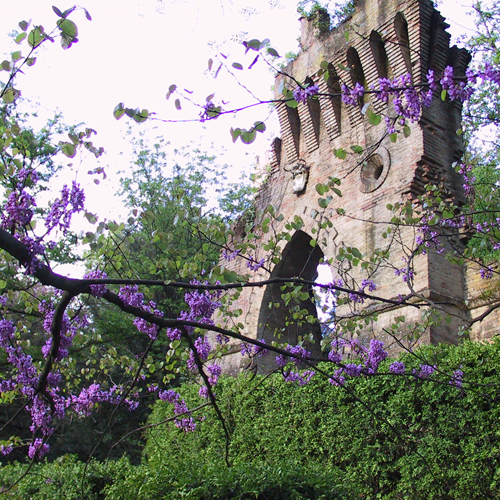 Villa Sorra