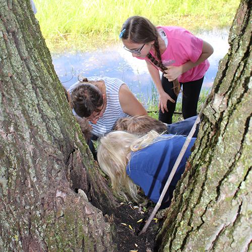 """Anche i bambini vengono coinvolti nell'iniziativa con laboratori a tema, come il corso gratuito """"Pianta un bulbo"""""""
