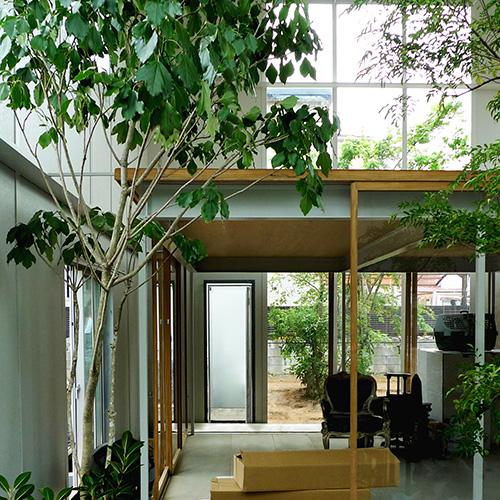 la casa con piante di ishigami - casa & design