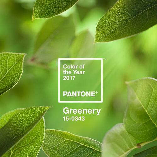 Il Greenery 15-0343 è il colore Pantone del 2017
