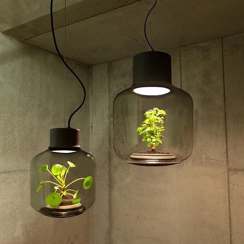Mygdal Lamp, in vetro soffiato, è un ecosistema autosufficiente che consente alle piante di crescere senza luce solare o irrigazione.  Design di Nui Studio
