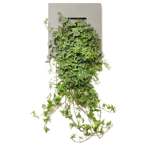I giardini verticali sono ormai diventati una vera e propria tendenza. Da Lineasette Table Garden realizzato in gres porcellanato (174 euro)