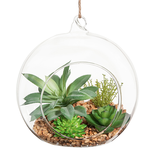 """<em>Terrarium succulente</em> di <a href=""""http://www.maisonsdumonde.com/IT/it"""">Maisons du Monde</a>"""