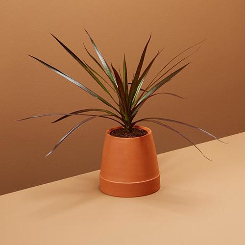 """Un vaso al contrario: è <em>Flipped</em> di <a href=""""http://www.boskke.com"""">Boskke</a>"""