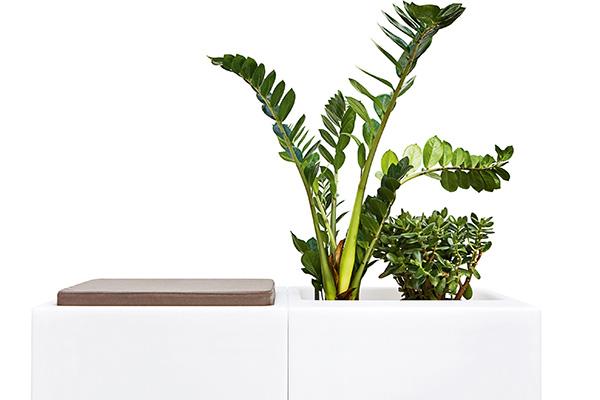 Seduta, fioriera o contenitore portaoggetti. È Look di Varaschin, il sistema con struttura componibile disponibile anche con illuminazione interna