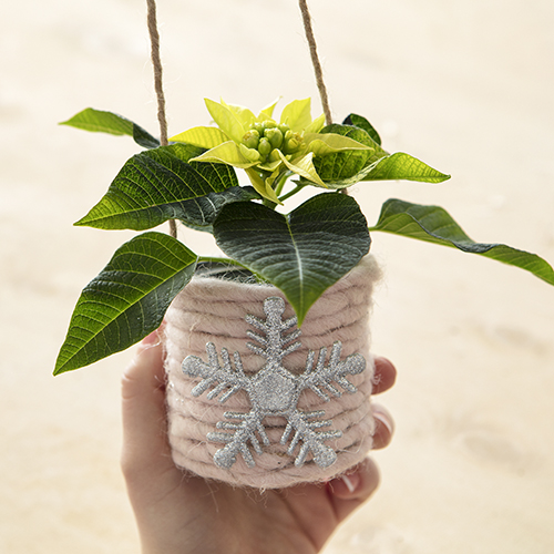 Appese al soffitto, queste delicate Poinsettie mini sono state posizionate in scatole e lattine rivestite con nastro e una decorazione che ricorda un fiocco di neve