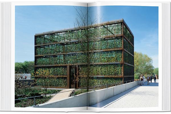 Gli architetti André Kempe e Oliver Thill descrivono l'Hedge Building come una pergola su cui cresce l'edera delle serre olandesi. La struttura  è impiegata come spazio culturale a Rostock in Germania