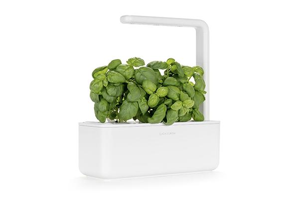 """Una soluzione green per chi ha poco spazio: <em>Smart Garden 3</em> è un giardino auto-irrigante dotato di lampada modulare che permette di coltivare senza preoccupazioni le piante in ogni stagione (99 euro da <a href=""""http://www.moronigomma.it/"""">Moroni Gomma</a>)"""