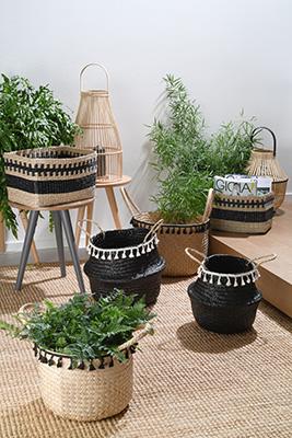La serie Exotico di Andrea Fontebasso 1760 ricorda, nei materiali e nella lavorazione, le ceste con cui le antiche popolazioni dell'Estremo Oriente raccoglievano i preziosi chicchi di riso