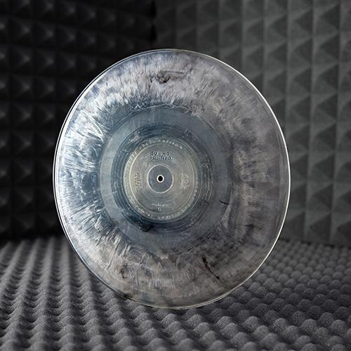 Verranno prodottimille dischi, in edizione limitata e numerata. Il ricavato della vendita sarà interamente devoluto alWWF