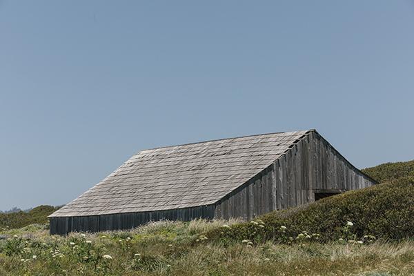 The Black Point Barn, uno degli unici edifici rimasti a Sea Ranch dalla fine degli anni Settanta. È stato ristrutturato negli anni Ottanta (© 2019 New York Times News Service)