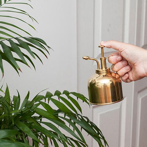 Tra gli indispensabili anche un nebulizzatore che aiuta a liberare le foglie dalla polvere ed è particolarmente indicato  per tutte quelle piante che amano l'umidità. Inoltre è consigliato anche per effettuare i trattamenti curativi poiché li diffondono in maniera uniforme. In foto un modello in ottone di Kikkerland