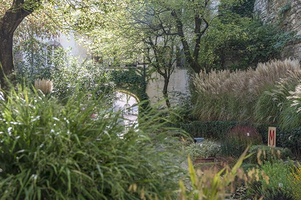 Il tema della manifestazione di quest'anno, il Pioneer Landscape, celebrare la vegetazione nella sua naturalezza e spontaneità
