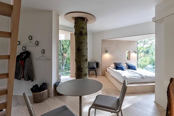 """Una casetta sull'alberoè uno dei desideri più comuni dei bambini e perché no anchedegli adulti. Proprio nell'estate  2019 hainaugurato il <a href=""""http://www.lovtag.dk"""">Løvtag Treetop</a>, una suite costruita in una piccola foresta nei pressi della città di Aarhus.La cabina è stata realizzata attorno a un grande e vecchio pino che attraversa il pavimento e il tetto (foto Soren Larsen)"""