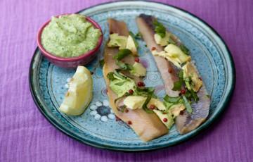 Aringhe con avocado e crema di zucchine