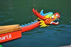 Cos'è il Dragon Boat e perché è lo sport delle donne in rosa