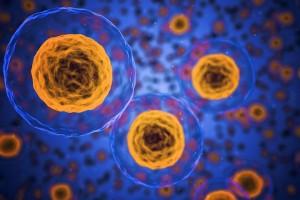 Tumore del seno: si apre l'era dell'immunoterapia