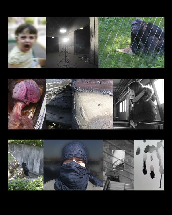 Douglas Gordon_collage